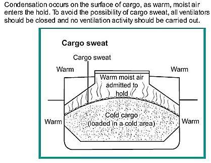 Cargo Sweat